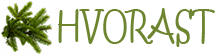 Сайт о хвойных растениях
