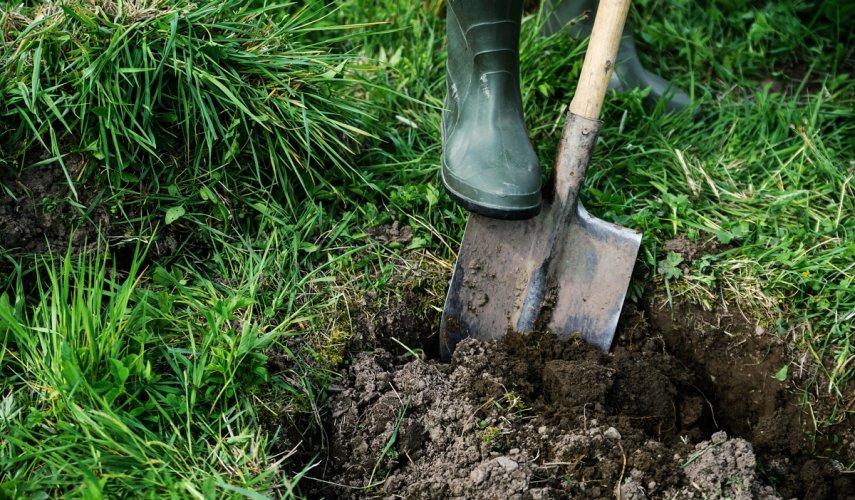 Выкапывание посадочной ямы
