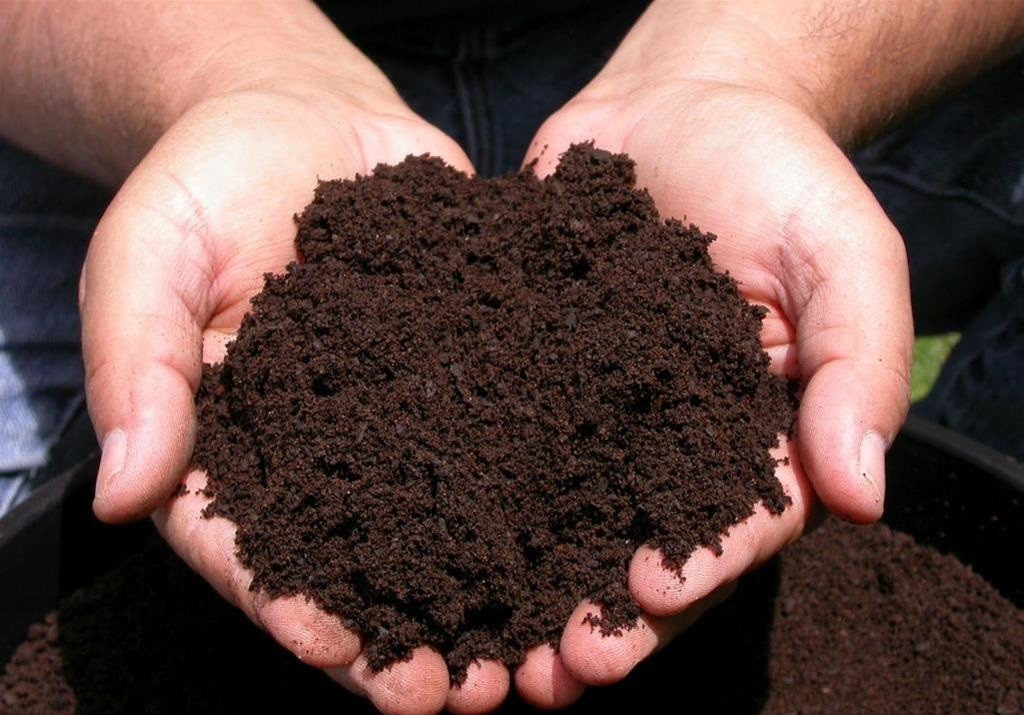 Рыхлая почва