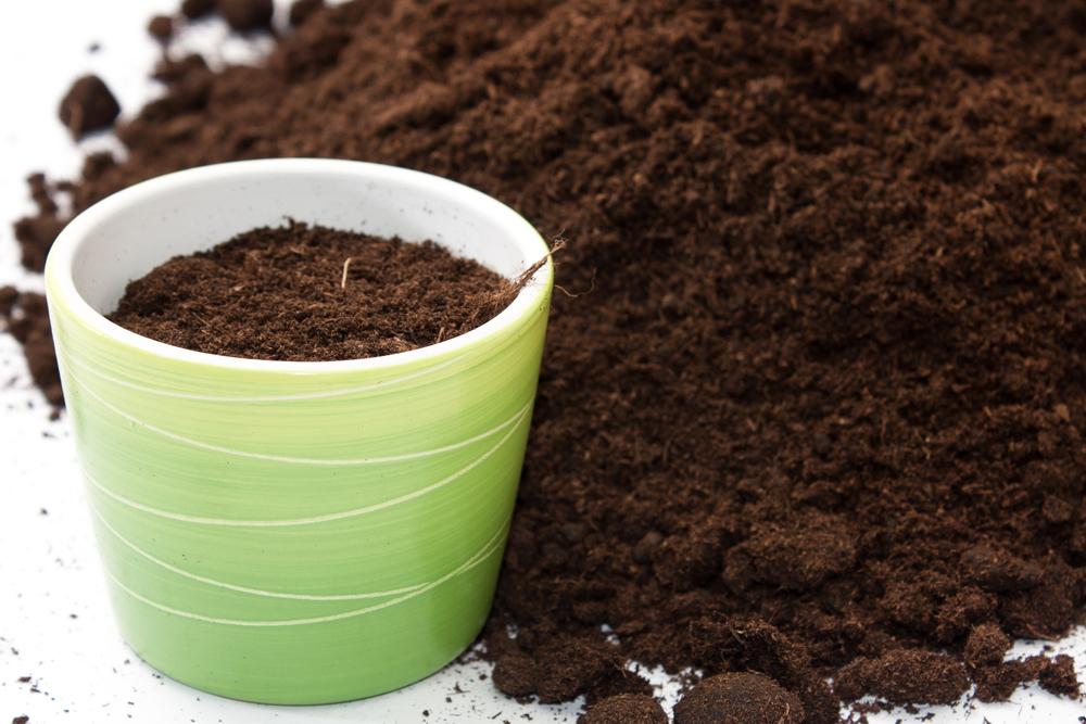 Почва для горшка