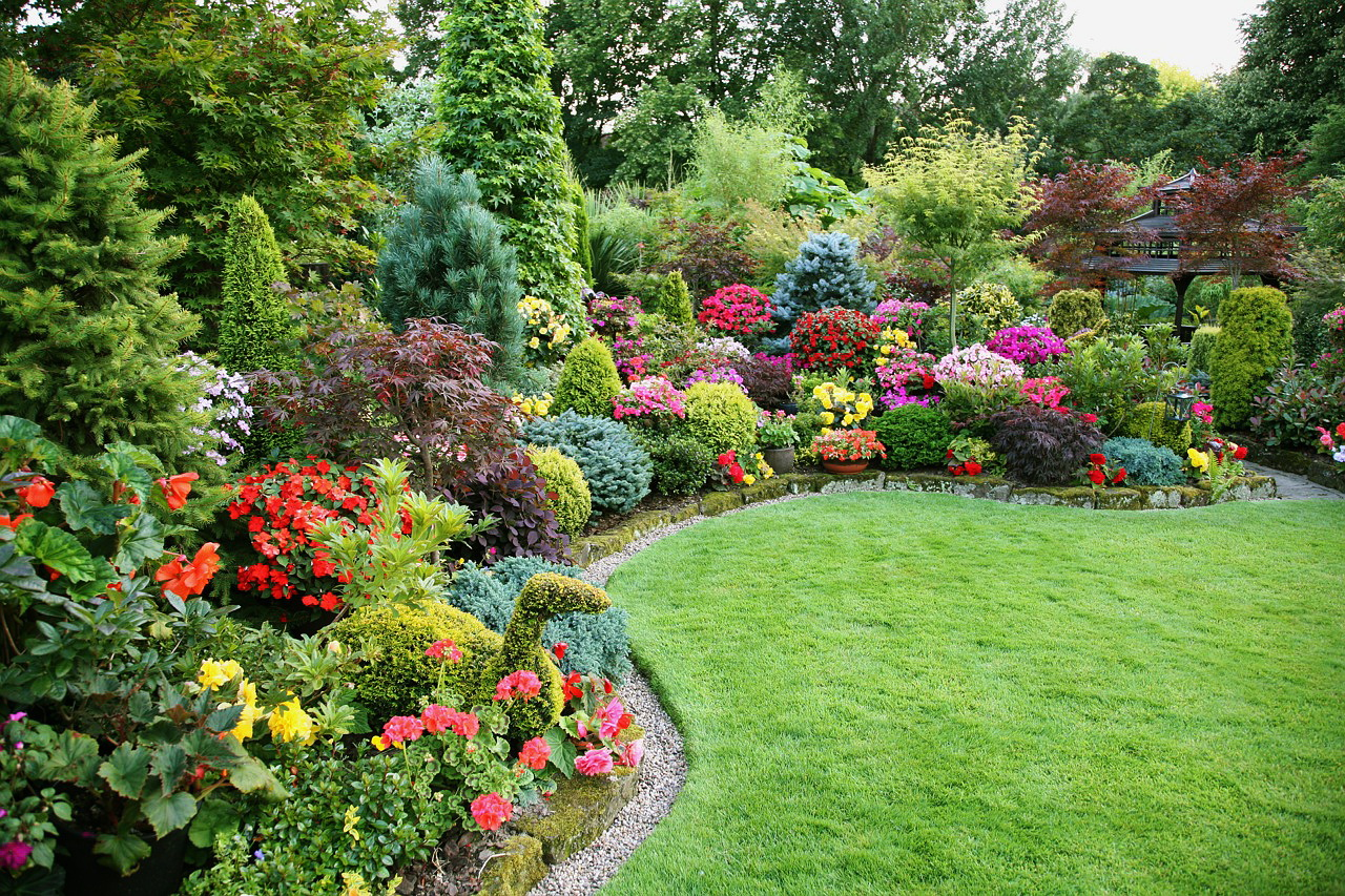 Садовая композиция из цветов и хвойных