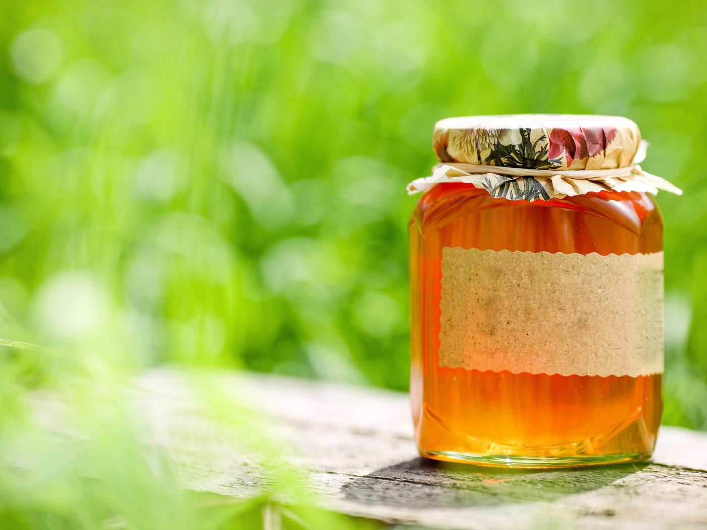 Мед из побегов сосны