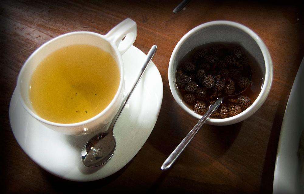 Варенье из сосновых почек с чаем